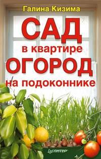 Кизима Галина - Сад в квартире, огород на подоконнике скачать бесплатно