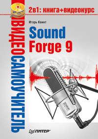 Квинт Игорь - Sound Forge 9 скачать бесплатно
