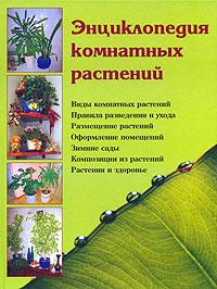 Логачева Наталья - Энциклопедия комнатных растений скачать бесплатно