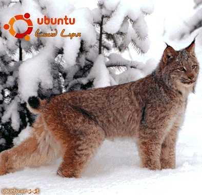 Неворотин Вадим - Руководство по переходу на Ubuntu 10.04 LTS «Lucid Lynx» скачать бесплатно