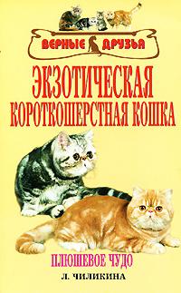 Чиликина Л. - Экзотическая короткошерстная кошка скачать бесплатно