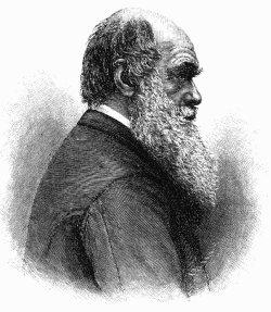 Энгельгардт Михаил - Чарльз Дарвин. Его жизнь и научная деятельность скачать бесплатно