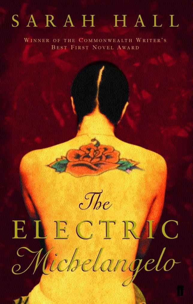 sarah hall the electric michelangelo essay