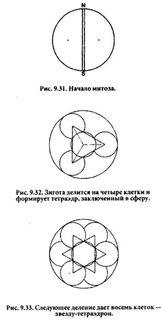 Боб Фриссел - Предисловие к сакральной геометрии Цветок Жизни (отрывок из книги) Doc2fb_image_03000017
