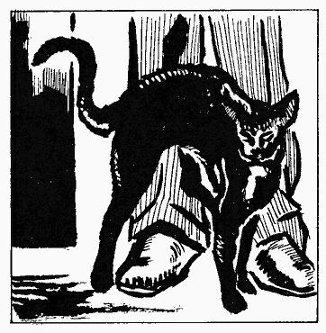 Черный кот эдгар по читать i