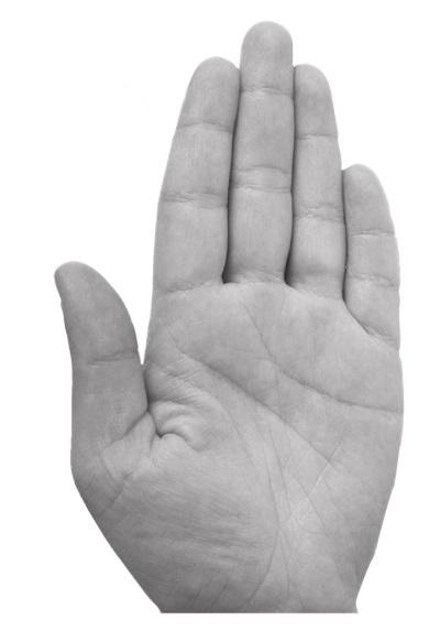 фото лопатообразной руки хотите